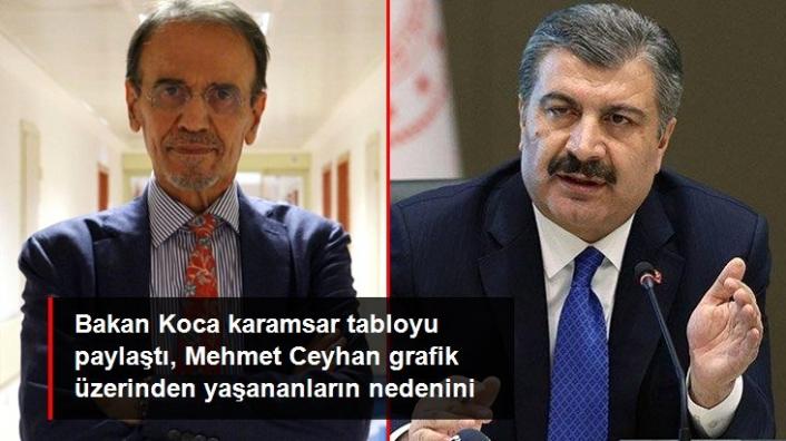 Mehmet Ceyhan: Her Gün 200-300 Bin Kişi Bağışıklığını Kaybediyor