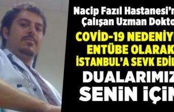 Virüs Kapan Doktor İstanbul'a Sevk Edildi