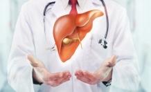 Türk bilim adamları kök hücre ve 3D biyo-yazıcı ile 'kalp' üretebilecek