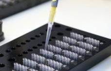 İsveç'te 'sahte PCR testi' skandalı! Soruşturma başlatıldı