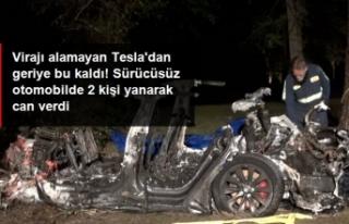 Sürücüsüz Tesla ağaca çarpıp küle döndü!