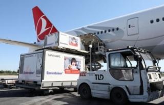 Yeni Parti Sinovac Aşısı Türkiye'de