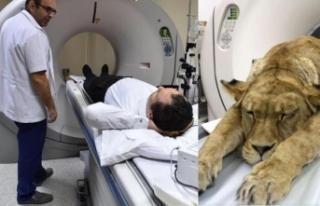İzmir'deki hastanede ilginç olay!