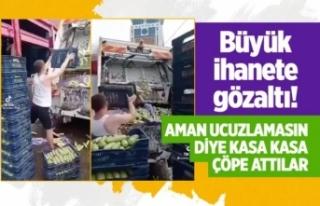 Kasa Kasa Sebzeleri Çöpe Atanlar Gözaltına Alındı