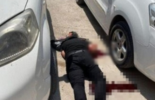 Mardin'de canlı bomba son anda etkisiz hale...