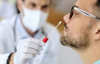 13 Soruda PCR Testi Zorunluluğu