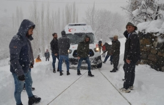 Hasta kurtarmaya giden ambulans kara saplandı