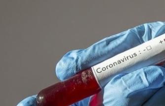 İzmir Tabip Odası, koronavirüsün meslek hastalığı sayılması çin SGK'ya başvurdu.