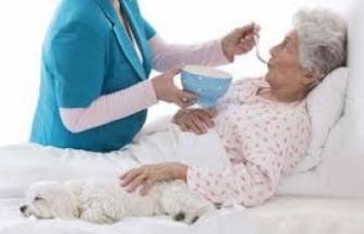 Hastalarımıza eşit şekilde, merhamet ve özveri ile bakmaya  edeceğiz