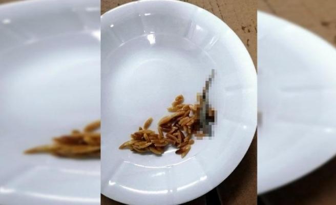 Yemekte Kertenkele İddasına İnceleme