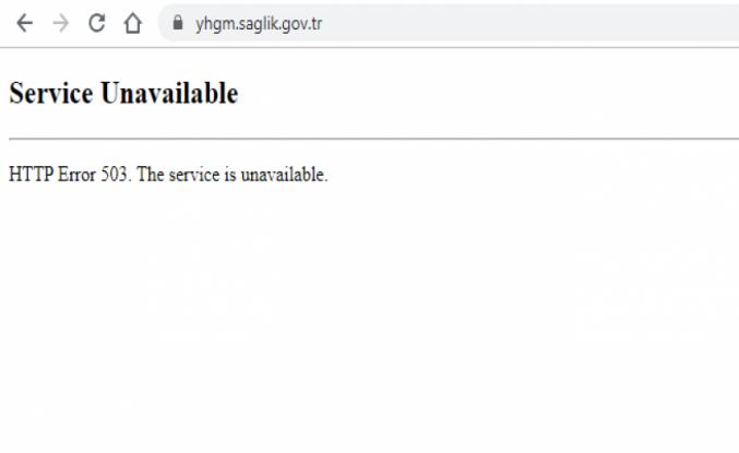 Yönetim Hizmetlerinin WEB Sitesi Çöktü