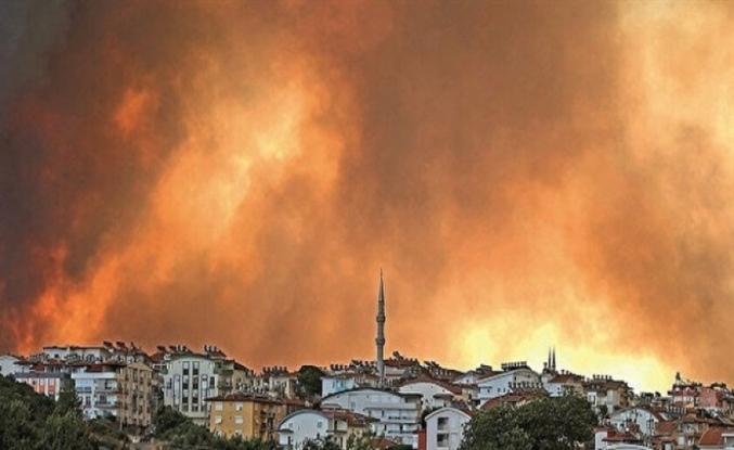Ormanları kim yakıyor